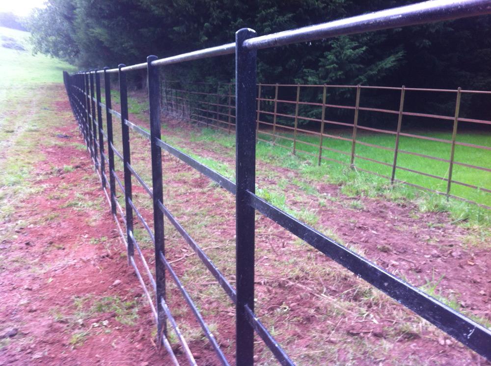 Railings_Somerset